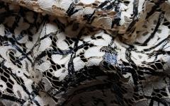 ASPESI-W2016-4405F:painting-lace