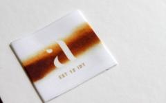 INDET-W2016-012