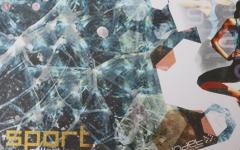Indet-W2011-14