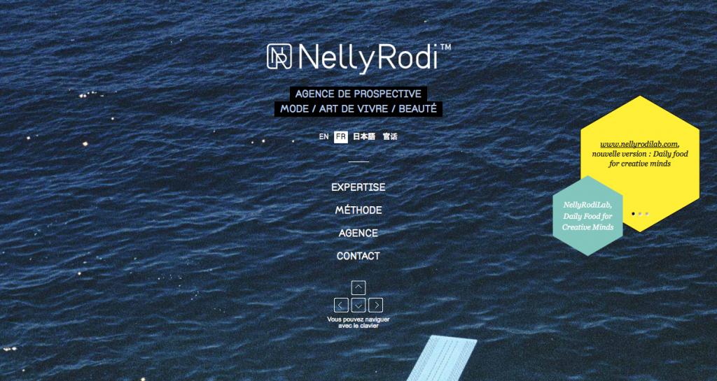 http://www.nellyrodi.com